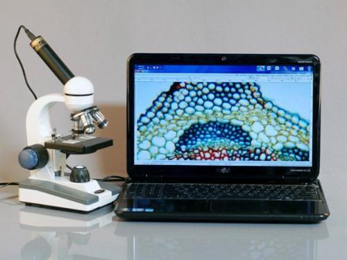 AmScope Home School C&F Microscope 25 Prepared Slides