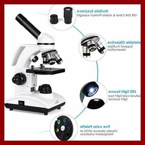 Microscope Cordless Illumination Compound
