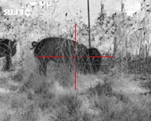 FLIR 6-24x75mm Imaging Scope 12 micron